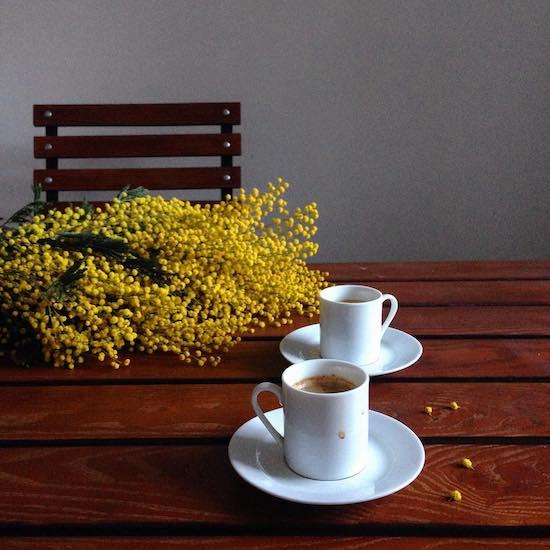 Мимоза, кофе