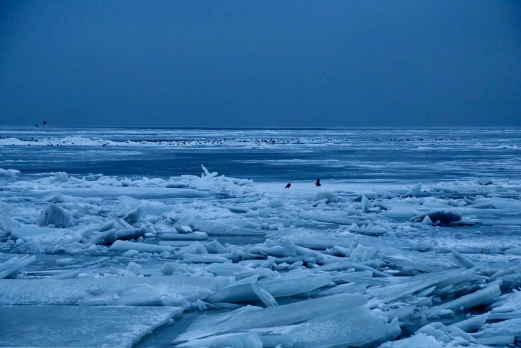 Азовское море, зима