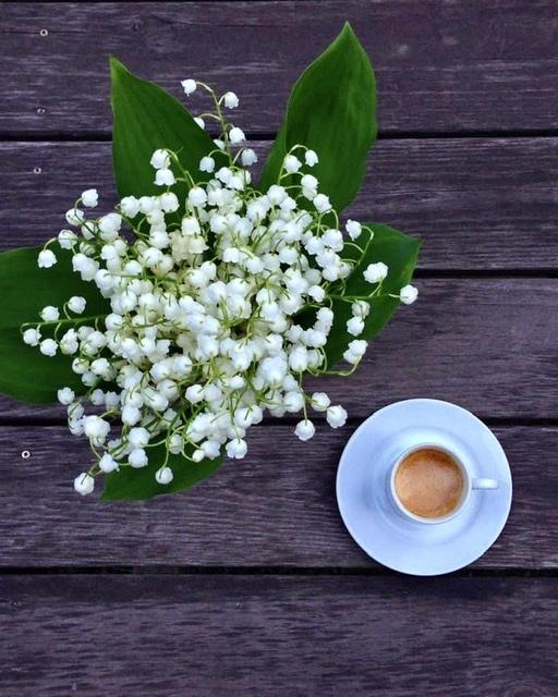 Время ландышей и кофе